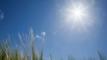 ঢাকাসহ ১১ অঞ্চলের ওপর দিয়ে বয়ে যাচ্ছে তাপপ্রবাহ
