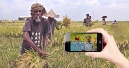 অ্যাপে ৬৪ উপজেলায় বোরো ধান, ১৬টিতে চাল কিনবে সরকার