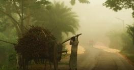 সাত জেলায় বইছে শৈত্যপ্রবাহ, বিস্তারের পূর্বাভাস