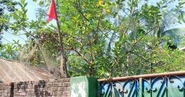 কুমিল্লায় লকডাউন করা বাড়িতে কৃষকের মৃত্যু
