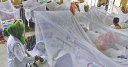 ডেঙ্গু আক্রান্ত হয়ে আরও ২২৪ জন হাসপাতালে